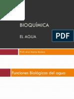 Bioquimica - Agua (1)