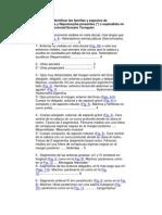 Clave Para Gerromorpha y Nepomorpha