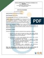 Guia de Actividades Trabajo Final 2012-02