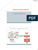 Bioquimica_aula19