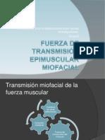 Fuerza de Transmisión epimuscular miofacial