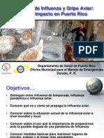 Presentacion gripe aviar - Versión Corta Corregida