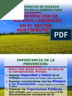 Presentacion General Prlv