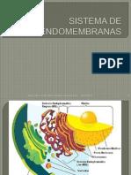 Aula 2 - Sistema de Endomembranas