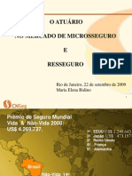 22-09-O Mercado de Micro-Seguro e Resseguro-Maria Elena Bidino