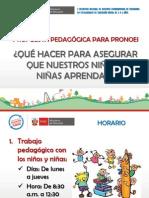 PROPUESTA PEDAGOGICA PRONOEI