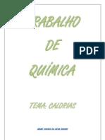 TRABALHO QUÍMICA - CALORIAS