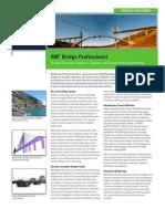 4415_RM-Professional_Data Sheet 0809 p