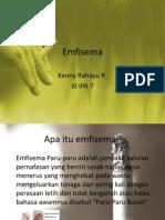 Emfisema Paru-paru (2)