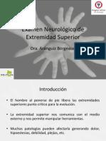 Examen Neurológico de Extremidad Superior