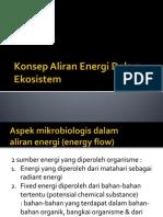4. Konsep Aliran Energi Dalam Ekosistem