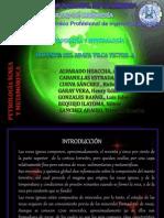 Petrografia y Mineralogia