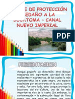 Canal Nuevo Imperial 1