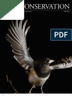 Bird Conservation Fall 2012 Short