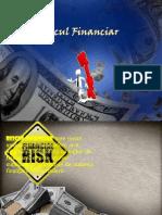 Riscul Financiar