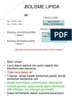 Titin File 13, Oks Lemak