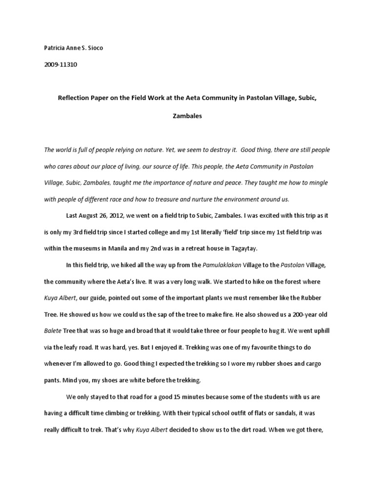Grandessays  Narrative Essay  Professional Writing Help Sample  Guide To Writing A Reaction Paper Career Goal Essay Sample Personification Essay  Good Example Essays