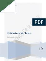 Estructura de Tesis Maestria y Doctorado BDV.