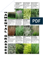 Grass Handout