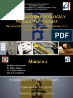 diplomado en psicología y psiquiatría forense