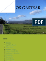 Viveros Gastrar (2)