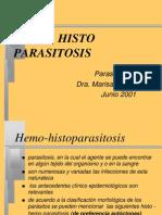 HemoHisto