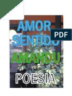 AMOR SENTIDO
