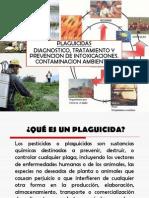 CLASE 11 Contaminación por PLAGUICIDAS