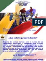 Modulo i Presentacion Seguridad Indstrial y El Entorno Laboral