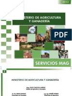 Servicios Mag