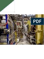 CERN Science Division