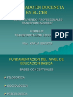Fundamentacion Del Nivel de Educacion de Educacion Basica