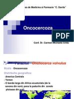 Oncocerca Volvulus