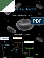 2 Hemostaza Lp 2