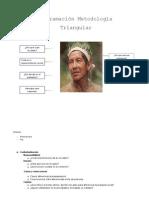 Programación - Metodología Triangular
