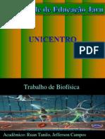 Trabalho de Biofisica - Pressao Arterial