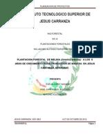 PROYECTO DE LA PLANTACION DE MELINA EN LOS 8 AÑOS DE CRECIMIENTO PARA...