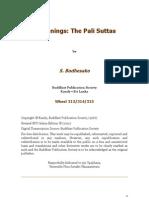 Bodhesako - Beginnings, The Pali Suttas