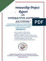 Enterprenureship Final Report 2011
