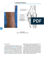 72 Capitulo Portada 1295 Anatomia y Palpacion