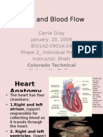 Heart+and+Blood+Flow CarrieGray Bhatt Individ Phase2