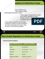 Plant Growth Regulators in Horticulture Crop