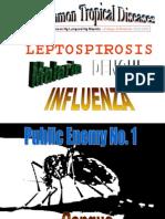 Dengue, Leptospirosis, Malaria, Influenze
