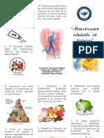 Triptico Alimentación saludable en Diabetes Mellitus Tipo 2