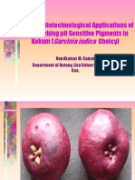 A UV radiation-absorbing pigment from Kokum  (Garcinia  indica) juice