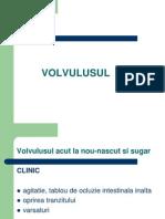 Volvulus Ul