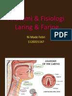 Anatomi Laring & Faring