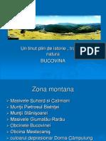Prezentatie - ''Bucovina''