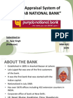 Credit Appraisal System of PUNJAB NATIONAL BANK