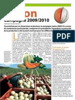 04 Melon